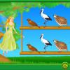 Ajută păsările să-și găsească perechea!